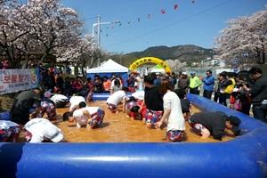부곡온천축제,경상남도 창녕군,지역축제,축제정보