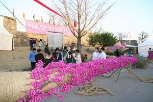 면천 진달래 민속축제,충청남도 당진시,지역축제,축제정보